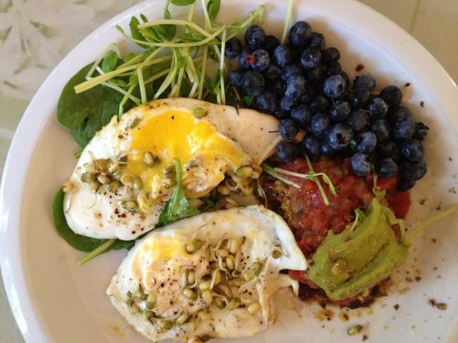 eggs berries beans greens